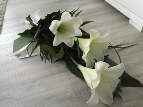 surukimppu liljat 12